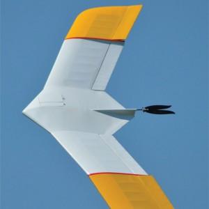 "Gulliver 77"" Plan MF274"